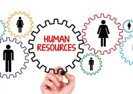 Hướng dẫn các thủ tục pháp lý nhân sự ban đầu theo luật định (TƯ VẤN)