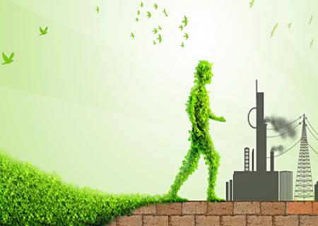 Lập Đánh giá tác động môi trường (ĐTM) - cấp cao nhất