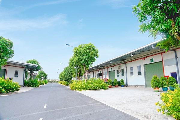 Thuê nhà xưởng 2000m2 tại Kizuna nhanh chóng và chất lượng