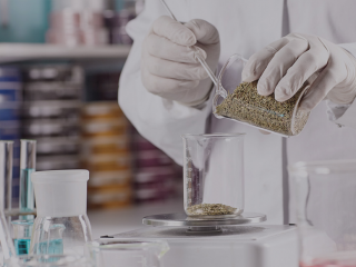 Procedures for establishing a cosmetic manufacturing company in Vietnam